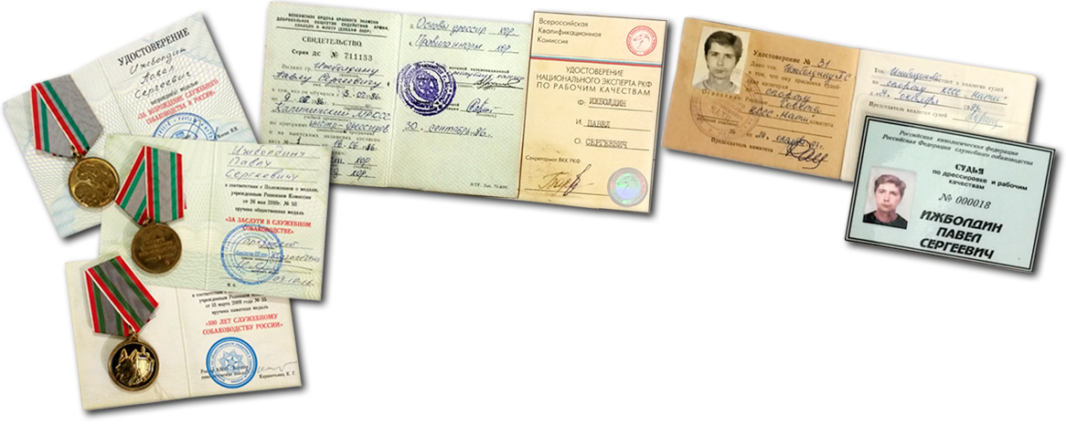 Павел Ижболдин - награды
