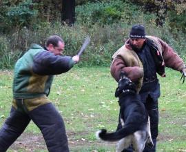 Спортивная дрессировка собак. «Кинологический центр Сокольники»