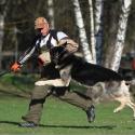 Денис Лапшин - инструктор, фигурант. Дрессировка собак в Москве отзывы